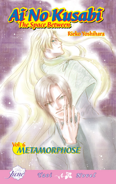 Book Review: Ai No Kusabi, Volume 6